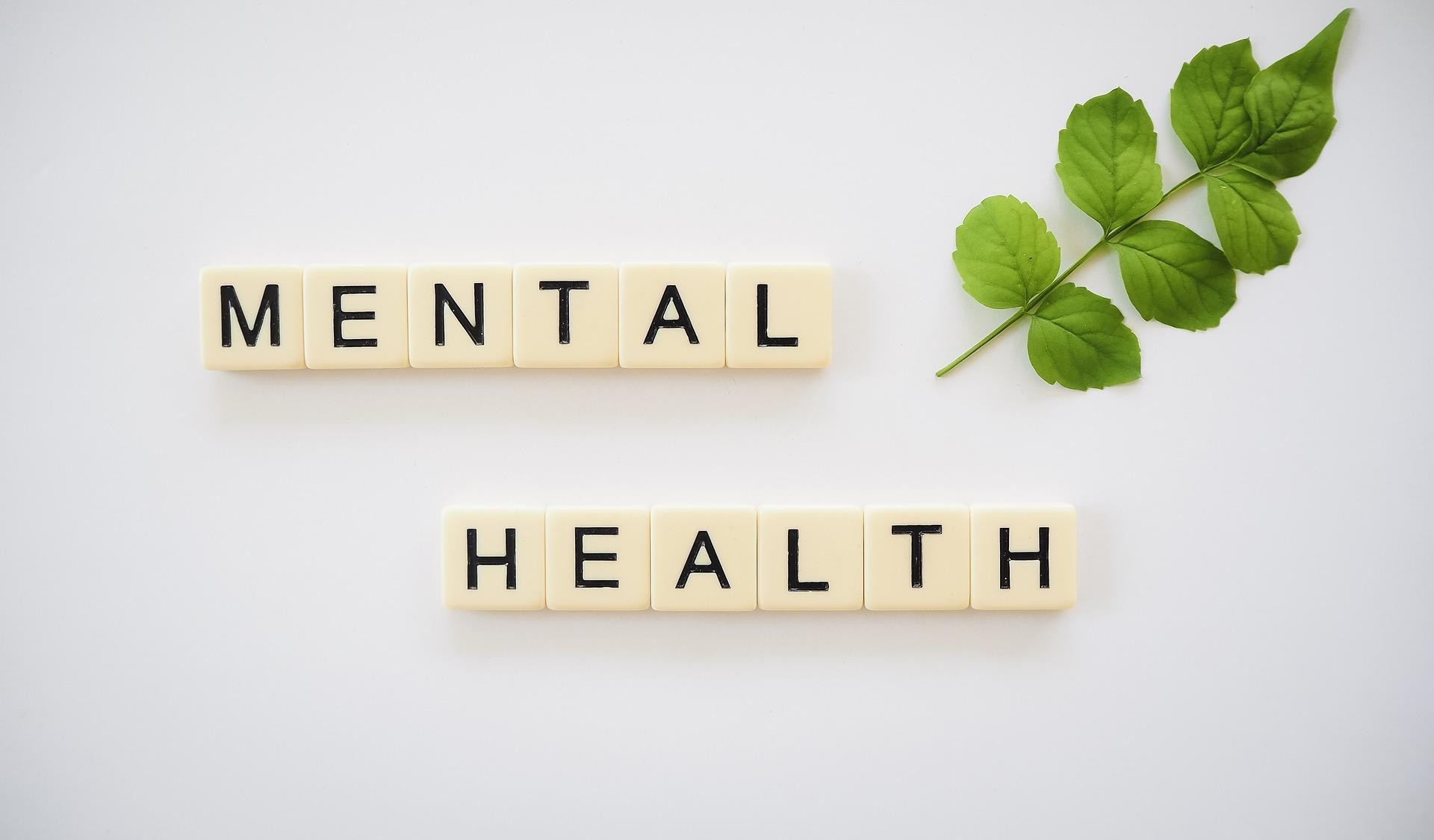mindfulness en la salud mental